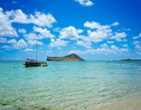 Hawaii Beach Life