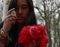 Heidi Harris – Animal Insect /// MUSIC VIDEO