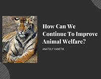 How Can We Continue To Improve Animal Welfare?