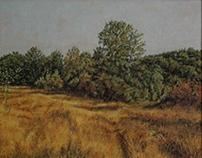 Autumn landscape (oil on canvas, 2012.)