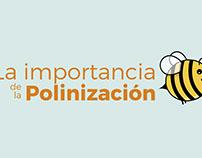 La importancia de la polinización