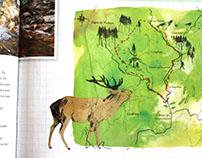 Maps Ardennen