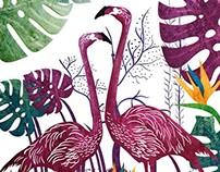 Poster - Flamingo
