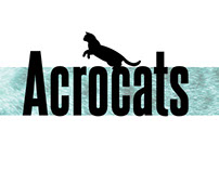 Acrocats Toy Project
