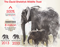 DSWT / iWorry Orphan's Project - Infographic