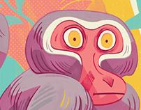 Monkey Geo
