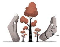 Editorial: Diluting Environmental Laws
