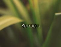 Videoclip - Sentido