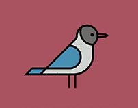 British Birds (part2/4)
