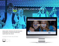 Sitio web Newland School