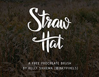 Straw Hat Free Procreate Brush