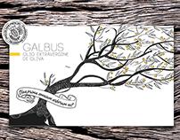 Tradizione Oliandola — Olive Oil Packaging