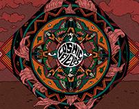Cosmic Fields — Album cover