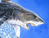 White Shark Speed Painting
