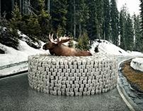 VOLKSWAGEN - Barriers