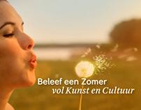 NPO - Promo Culturele Zomer 2011