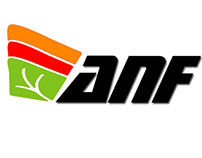 """Logo for Textile Industry """"Ananafit"""""""