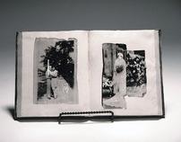 Diary Series