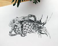 Octopus hugging pineapple