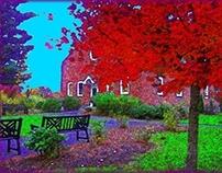 2009 Fall Walk