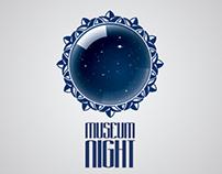 Museum Night 2013 logo (concept)