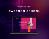 Raccoon Landing