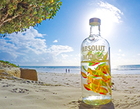 ABSOLUT DIANI