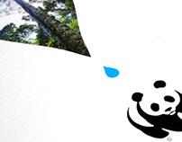 ULU MUDA Forest - WWF-Malaysia