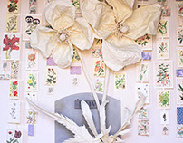 "Secret Garden Villa Bardini ""Herbarium"""