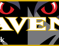 2009 M&T Bank / Baltimore Ravens Magnets
