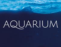 Aquarium - Der neue Raum im Auditorium