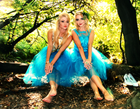 Fairies, elves and enchanted forest