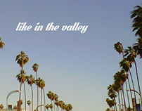 Like In The Valley