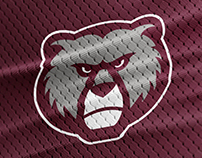 Montana Grizzlies Rebrand