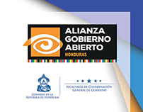 Diplomado Gobierno Abierto - Banner Design