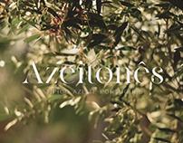 Azeitonês - Típico Azeite Português