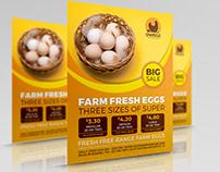 Farm Fresh Eggs Flyer Template