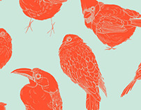 Fat Little Birds Pattern