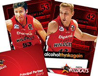 Perth Wildcats 11/12 Livery