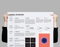 Aural Synapse (The Process Chart)