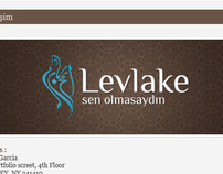 Levlake Logo & Blog Project
