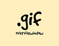 Overview Window Gif Work