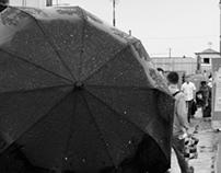Uzbek umbrellas