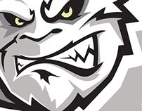 Green Bay Blizzard 2015 Rebrand