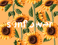 You're the sunflower