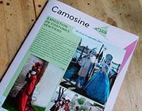 Mise en page, encart style magazine pour Camosine