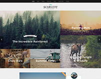 Blog & Ecommerce WordPress Theme