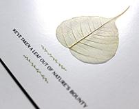 Prince Serenity Launch Invite
