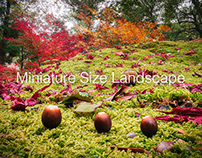 Miniature Size Landscape -season6-