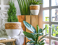 Plant Pot Brand